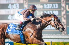 Photo Call (IRE) & Drayden Van Dyke score in the Rodeo Drive Stakes