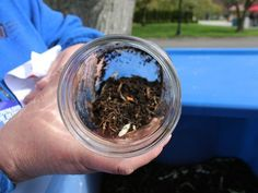 The Detroit Zoo is luring visitors with the temptation of a free bucket of animal poop.   On Saturday, April 14, the zoo will host its sixth annual GreenFest, an event dedicated to celebrating Earth Day and engaging the community.
