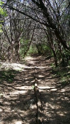 Great trail!