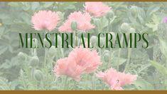 medicinal herbs used as herbal remedies for menstrual cramps