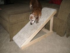 DIY Dog Ramp - PetDIYs.com