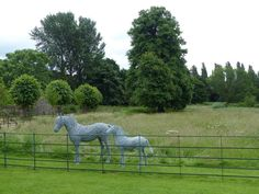 3. Wire mare and foal at their stunning new stately home in Somerset.