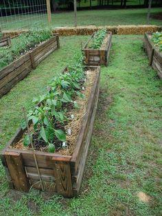 straw bale garden fences - Google Search