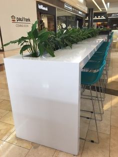This Silestone White Storm application is very #TopsOnTop; but have you noticed how good it looks like combined with plants?
