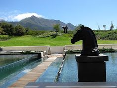 Steenberg Wine Estate Cape Town, Farms, Places To Travel, Places Ive Been, South Africa, To Go, African, Reading, Books