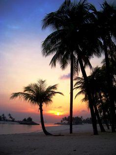 Singapore sunset - tropical island paradise - #island #sunset