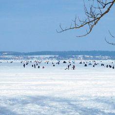 How the #lake near #Minsk looks like in #winter it's #fishing time