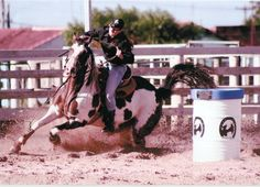 My favourite coloured horse ( piebald) and my favorite horse sport ( barrel racing )