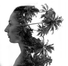 Double Exposure Bild - Erd & Holz Element