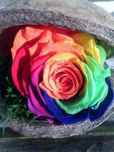 93 Best Rose Eternelle Montage Images Ideas Ornaments Decorating