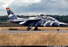 Dassault-Dornier Alpha Jet 1B aircraft picture
