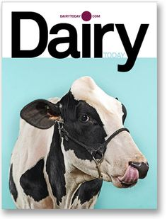 second best redesign of the decade. brilliant how cows/dairy become compelling. #moo #pentagram
