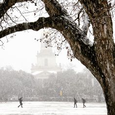 A rare snow day at Baylor! Love the beautiful campus.