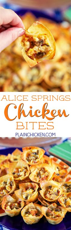 Alice Springs Chicken Bites - chicken, bacon, honey mustard, cheese and mushrooms baked in wonton wrappers. SO good! Can make ahead and bake later. Great for parties and tailgating. These are always the first thing to go!!