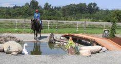 Bildergebnis für obstacles horse trail