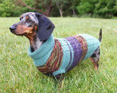 KNITTING PATTERN, Scrap Yarn, Cowl Neck, Mini Dachshund, dog sweater, dog, dachshund, doxie, wiener dog, little dog, pet clothes, pets