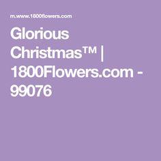 Glorious Christmas™ | 1800Flowers.com - 99076