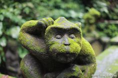 Stone monkey carving in Ubud's monkey forest - Indonesia. Photo: Rhett A. Butler