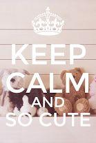 Keep calm and so cute ! <3