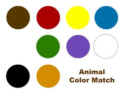 Color matching activity for Brown Bear Brown Bear What Do You See? This FREE printable color matching mat promotes storytelling and color recognition. Preschool Centers, Preschool Activities, Infant Activities, Educational Activities, What Do You See, Eyfs, Christmas Colors, Brown Bear, Teaching Resources