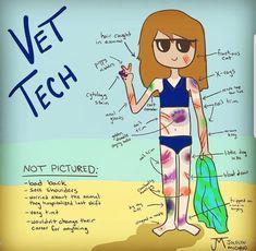 How to spot a vet tech at the beach. Vet Tech Quotes, Tech Humor, Veterinarian Technician, Veterinarian Quotes, Vet Tech Student, Vet Assistant, Pet Vet, Vet Clinics, Goldendoodle