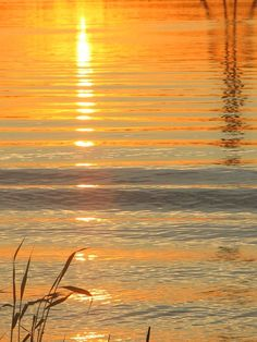 sunset at the beach by Heli Aarniranta on ARTwanted