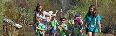 Insect Investigations Summer Camp Phoenix, AZ #Kids #Events