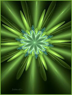 this is groovy green