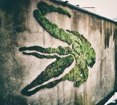 art mural artistes contemporains crocodile en mousse vegetale