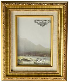 Imperial Frames 61457 5 by by Picture/Photo Frame, Dark Gold with Floral Design and a Canvas Liner