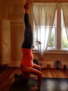 38 best yogis images on pinterest  gymnastics exercises