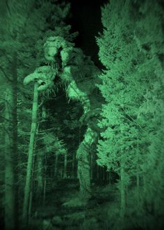 Troll Hunter, nightvision Such good fun original and on such a tight budget it looks great!