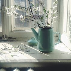 Spring blossoms on the windowsill.