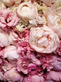 #createursdebeaute#pinkboudoir