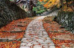 Small Garden Footpaths Unique  Garden - Path