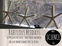 Homeschool Science - Fabulous Fridays! — What's worked in our home for 16 years, plus some new stuff!