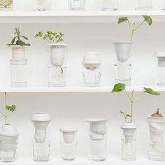 Polish artist and designer Alicja Patanowska created a collection of ceramic plant pots that fit inside old glasses so both stem and roots can be seen.