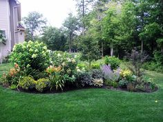 beautiful island with conical limelight hydrangea, quick fire hydrangea, a crabapple tree, Russian sage, daily lilies and much more.