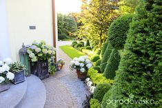 Ogród nie tylko bukszpanowy - część i