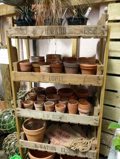 Would be a great way to store all my items in the mud room after we get it fixed up YEAH! The Drill Hall Emporium: wonderful recycled English potting shed terracota Unique Garden, Diy Garden, Garden Pots, Garden Sheds, Wooden Pallet Crafts, Wooden Pallets, Garden Shed Interiors, Old Garden Tools, Gardening Tools