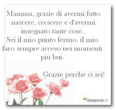 mamma_mia.jpg (480×456)