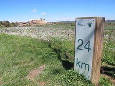 La sèquia de Manresa fa 26 quilòmetres. I n'hi ha marcats 24,8 /© Gg