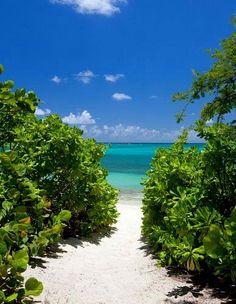 Beach at Jumby Bay in Antigua