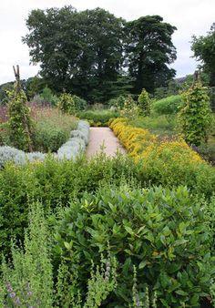 Planning Your First Herb Garden