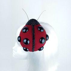 I think this ladybir