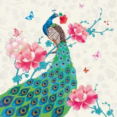 Clare Maddicott Publications is a publisher of design-led greeting cards and gift wrap. Peacock Painting, Peacock Art, Fabulous Fabrics, Peonies, Decoupage, Stationery, Greeting Cards, Gift Wrapping, Birds