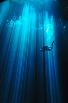 Cave diving is awesome