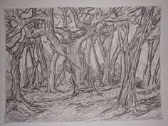 Summit Park Garry Oaks Pencil, Graphite and Ink on Paper 8 x 10 Gillian Cornwall, c 2010 Down time: Puzzles, tea, a sketch book. Do Your Best, Good Thoughts, Rest, Tapestry, In This Moment, Ink, Freedom, Painting, Hanging Tapestry