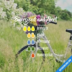 Energised and Alert - Essential Oil Diffuser Blend by lenora Essential Oil Diffuser Blends, Doterra Essential Oils, Young Living Essential Oils, Doterra Diffuser, Doterra Blends, Sante Bio, Aromatherapy Oils, Aromatherapy Recipes, Belleza Natural