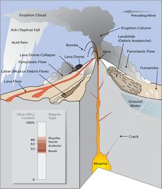 Illustration of volcano showing different types of volcano hazards, cycle 1, week 17